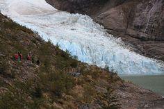 glaciar serrano - Buscar con Google