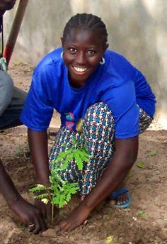 Senegal, planting trees <3