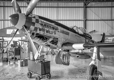 """P-51 Mustang """"Wee Willy II"""" in the Planes of Fame hanger."""