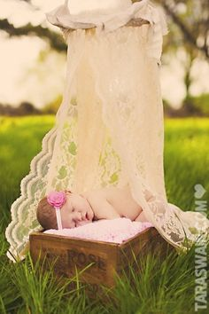 Awesome newborn photos idea: use your wedding veil in the picture!