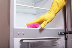 Eddike kan få din mikroovn til at skinne, fjerner dårlig lugt i køleskab og ved skraldespanden og drukner de irriterende bananfluer. Det er blot...