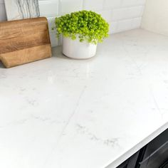 Full Slab View Of Carrara Grigio Quartz The Look Of