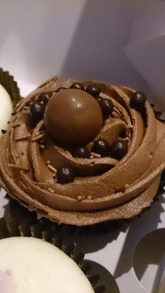 An order of chocolate cupcakes - heaven for any chocoholic! Fudgey chocolate sponge, chocolate buttercream and, of course, chocolate sprinkles and toppings. These were done for a 1st birthday party, but there's always an excuse for a chocolate treat ;)
