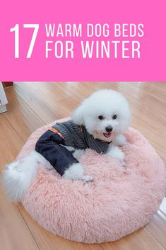 Buy products related to faux fur dog bed products and see what customers say about faux fur dog bed products Cute Dog Beds, Dog Beds For Small Dogs, Pet Beds, Cute Dogs, Miniature Dog Breeds, Therapy Dog Training, Loyal Dogs, Dog Wallpaper, Dog Halloween