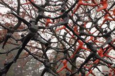 The Hakone Open-air Museum, Japan