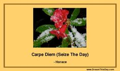 """Seize The Day"" (Carpe Diem) is sometimes interpreted as an invitation to party irresponsibly - without regard for the consequences. My interpretation of Carpe Diem is to seize the day in the sense of honoring the importance and sanctity of each day we live. It is so easy to delay the important parts of living until another day. But don't do that... Do something truly important Today.  Make Today count. Today - each Today - is the most important day of your life."