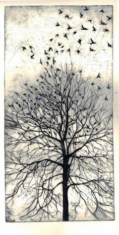 From the Trees by Philippa Jones - Original hand pulled etching Philippa Jones Gallery Creation Art, Art Graphique, Gravure, Tree Art, Bird Art, Printmaking, Cool Art, Art Projects, Art Drawings