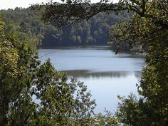Lake Catherine, Arkansas. When I was a kid, we had a lake house here. I have fond memories of spending time there with my parents and grandparents.