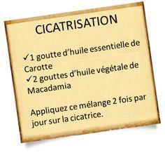 Huile essentielle de Carotte : Recettes cicatrisation