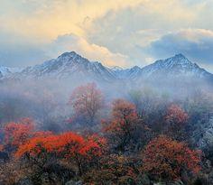 Almaty, Kazakhstan by Stanislav Dmitriyev