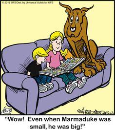 Marmaduke Comic Strip, August 13, 2016     on GoComics.com