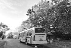 calles de Ranelagh en B & N - Ranelagh, Berazategui, Buenos Aires Buenos Aires, Street, Parks