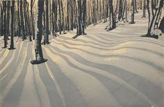 looks like woods from my childhood where I would silently cross country ski thru
