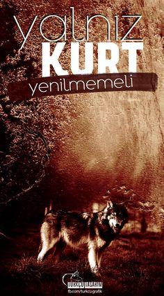 Iphone Arkaplanları, History, Movie Posters, Movies, Kara, Allah, Ottoman, Film Poster, Films