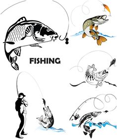 Fishing for spinning vector. We have over 10,000+ pictures. All images on the site vectorpicfree.com free for download and ready for print.