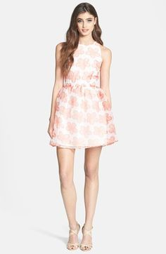 BB Dakota Organza fit and flare dress