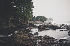 West Coast Forlorn Beauty