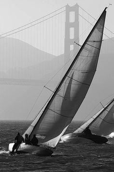 sailboats San Francisco