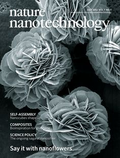 Nanoscale structures that are shaped like flowers have been routinely produced from inorganic materials for almost a decade. Nature Nanotechnology, Vol 7, Issue 7 #nano Nature Publishing Group
