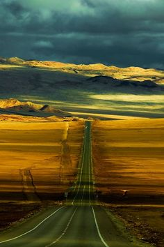 pinterest.com/fra411 #road - Panamerican Highway ~ By Philippe Reichert