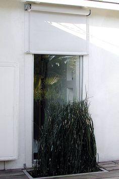 Prysznic zasłonięty naturalną zielenią - pomysłowo :)