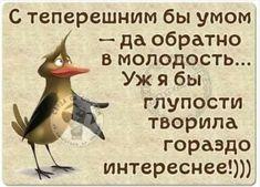 Искрометные и очень жизненные шутки для прекрасного настроения Humor, Animals, Smile, Beauty, Animales, Beleza, Cheer, Animaux, Humour