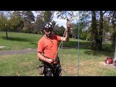 ATRAES MicroFrog SRT System - YouTube
