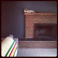 "Benjamin Moore ""Flint"" Gorgeous inky charcoal. Favorite wall in my house!"