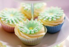 Spring Daisy Cupcakes Recipe