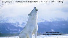 Tot ceea ce facem isi propune ca obiectiv  supravietuirea.Prin definitie daca esti mort nu mai poti face nimic - Bruno Medicina  http://www.traininguri.ro/predator-selling/ https://www.facebook.com/bruno.medicina.1?fref=ts http://www.brunomedicina.com/
