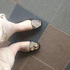毛皮にみせかけた靴 タイの大好きな靴やさんの靴 お気に入り打合せへ