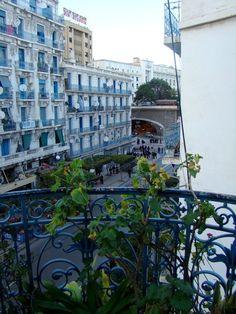 djazairi:  Didouche Mourad, Alger