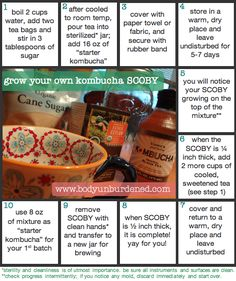 Grow your own kombucha SCOBY in 10 easy steps! #health #kombucha