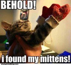 Hahahahahaha! I ❤ cats!