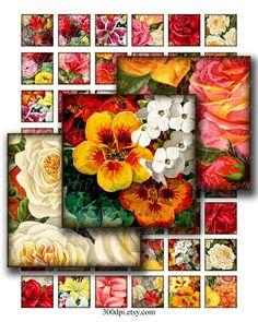 1 x 1 inch squares printable download digital collage sheet vintage images garden flowers roses tiles pendant magnet sticker no.259A