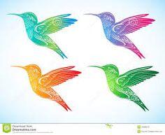 Resultado de imagen para colibri