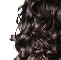 Natural Hair Loss Shampoo - Restores Essential Nutrients to Your Hair and Scalp.
