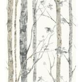 Birch Trees Peel and Stick Wall Decor