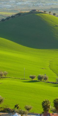 76 Best Gorgeous Green Images Green Shades Of Green
