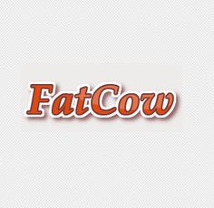 New Fatcow Icon