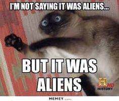 Image result for alien pics funny