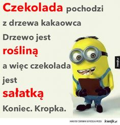 Cala prawda o czekoladzie. Weekend Humor, Funny Mems, Just Smile, Wtf Funny, Motto, Minions, Positive Quotes, Funny Animals, Haha