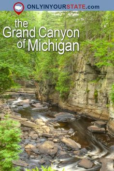 Travel Michigan Attractions USA Great Lakes State Grand Canyon Natural Beauty Places To Visit Outdoors Adventure Waterfalls Natural Wonders Hidden Gems Canyon Falls Easy Hikes Trails Hiking Day Trips Gorge Sturgeon Ri Michigan Vacations, Michigan Travel, Vacation Trips, Day Trips, Vacation Spots, Camping Michigan, Vacation Places In Usa, Midwest Vacations, Weekend Trips