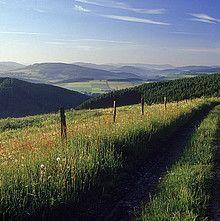 Wandern auf dem Homertweg von Arnsberg über Eslohe bis zum Rothaarsteig.