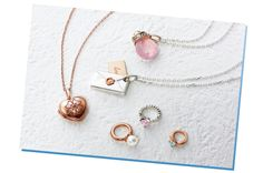 4℃ 40th Anniversary Collection-Memory of Delight-
