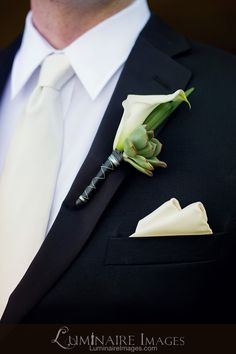 Lily boutonniere with succulent