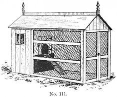 coop, this design is nearly 100 years old. basic design is still with us today....you want some space for the critters to scratch, place to hang a feeder, tall enough to stand in, access to collect eggs and a roof to keep them all dry!