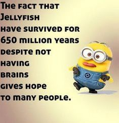 Charlotte Funny Minions (05:48:48 PM, Tuesday 17, May 2016 PDT) – 40 pics