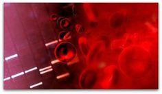 http://jeitosaudavel.wordpress.com/2013/05/24/resultado-do-exame-de-sangue/ - O exame de sangue deixou o recado: agora é hora de levar a reeducação alimentar a sério e fazer atividade física com dedicação.