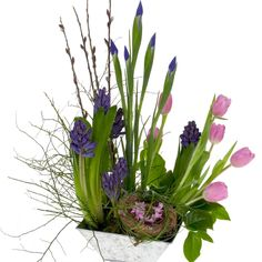 Hyacinths, iris, tulips and more in a springtime landscape design.  Lovely fresh flowers from Sun Valley Farms.  How-to video http://www.floraldesigninstitute.com/Media/Movie0375-Spring-Landscape2/Spring-Landscape2.htm